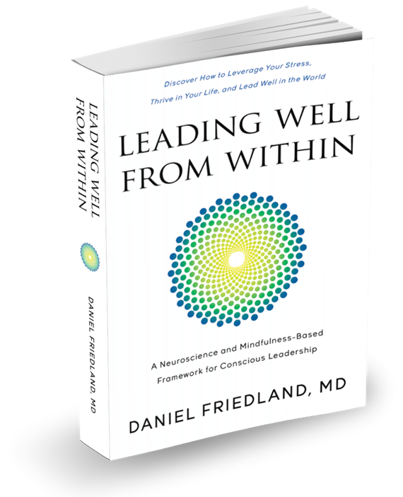Leading Well From Within by Daniel Friedland MD