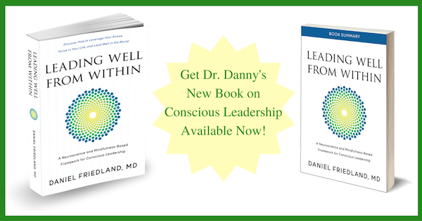Leading Well From Within by Daniel Friedland MD - Get Book